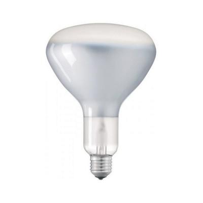 Lampadina filamento Led R125 11W E27 Lucida Dimmerabile
